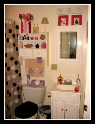My bathroom circa 2008. Imagine my heartache when I had to gender neutralize it for my boyfriend in 2010.