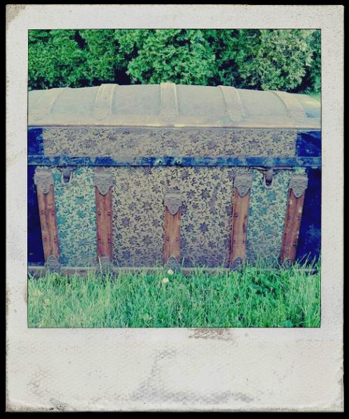 trunk polaroid