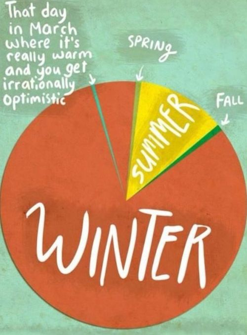 Winter Weather Wheel / from TheSirensTale.com