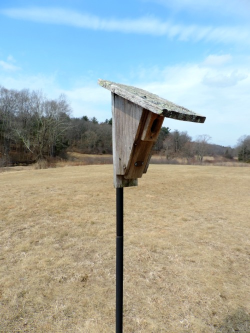 Birdhouse at Sheep Pasture / from TheSirensTale.com