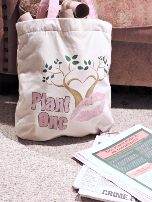 Plant One / from TheSirensTale.com